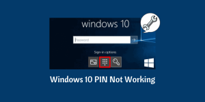 Windows 10 PIN Not Working
