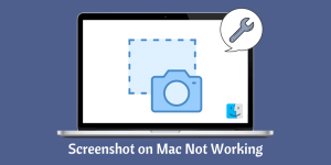 Screenshot on Mac Not Working
